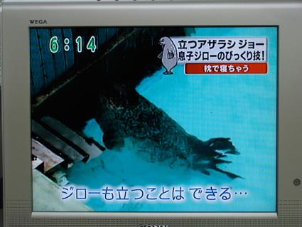 2008062502.JPG